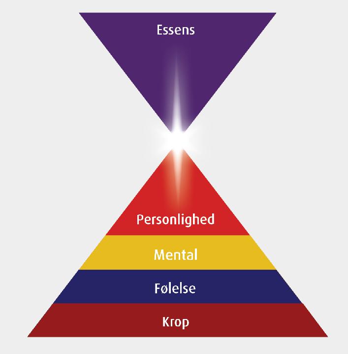 De-5-niveauer-basic